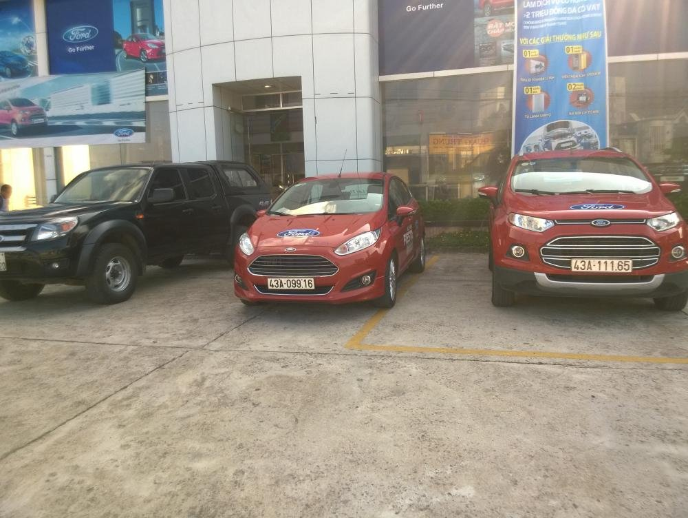 Ford Bình Định