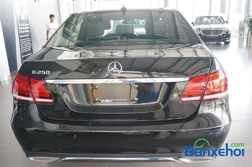 Cần bán Mercedes E250 đời 2015, màu đen-5