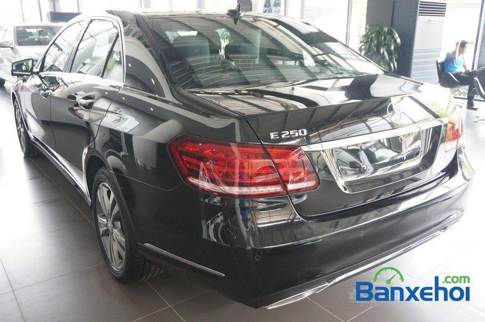 Cần bán Mercedes E250 đời 2015, màu đen-6