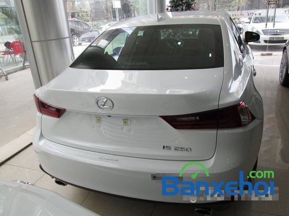 Việt Auto cần bán Lexus IS 250 đời 2014, màu trắng, nhập khẩu-4