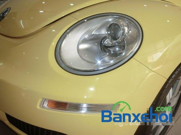 Cần bán Volkswagen Beetle đời 2009 - Xe đang có sẵn, giao xe ngay-3
