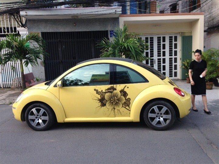 Bán xe Volkswagen Beetle  2011 cũ tại TP HCM giá 820 Triệu-1