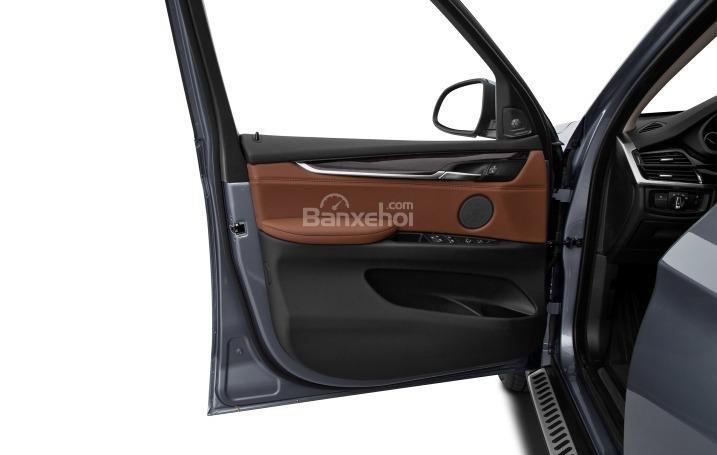 Ngăn chứa đồ trên cửa xe của BMW X5 2015,