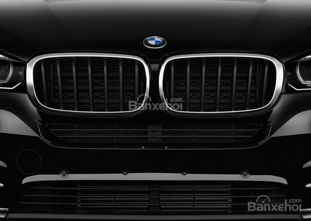 Lưới tản nhiệt hình quả thận của BMW X5 2015.