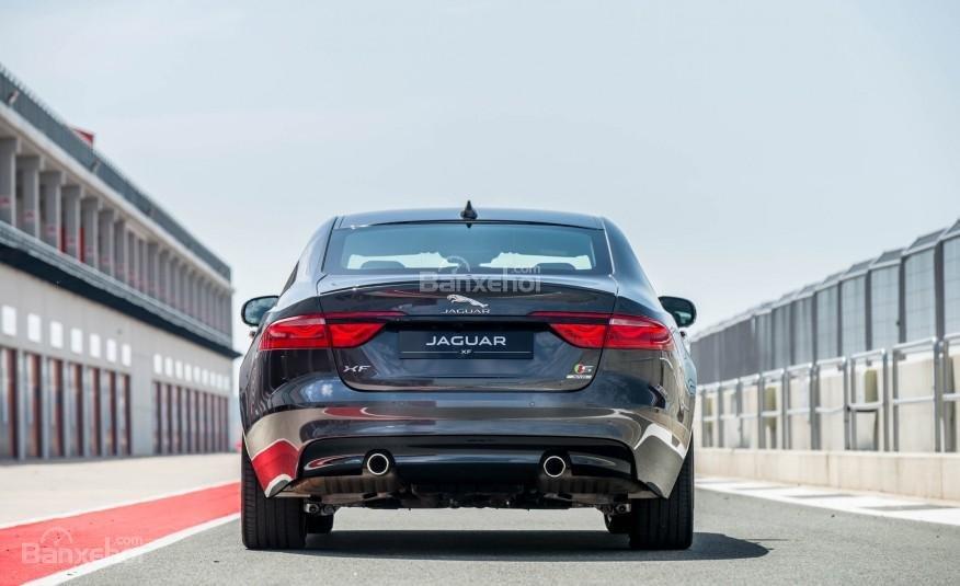 Thiết kế đuôi xe Jaguar XF 2016 đậm phong cách F-Type thể thao 3
