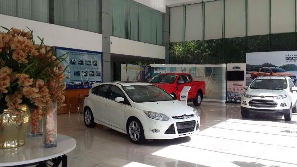 Ford Vinh (6)
