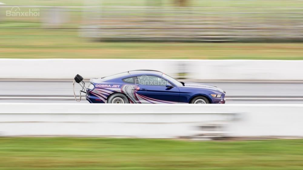 Ford Mustang Cobra Jet 2016 4