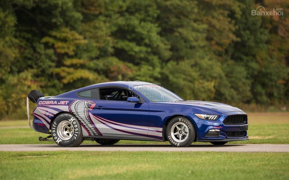 Ford Mustang Cobra Jet 2016 7