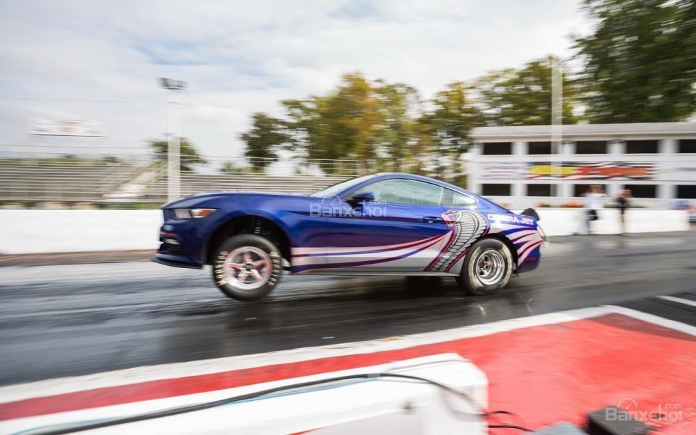 Ford Mustang Cobra Jet 2016 1