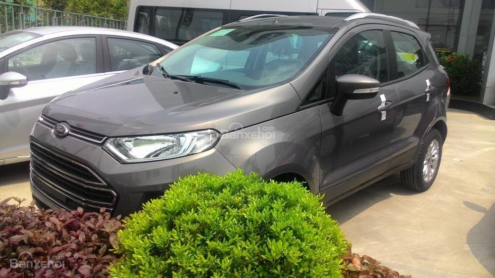 Bán xe Ford EcoSport Titanium đời 2017, màu xám, 600tr-5