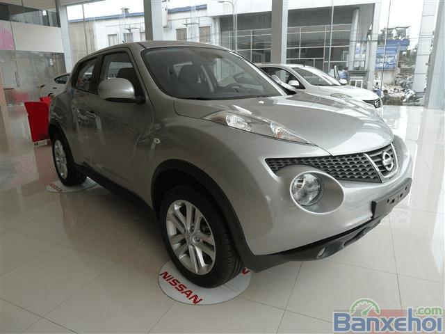Bán Nissan Juke đời 2014, màu xám -0