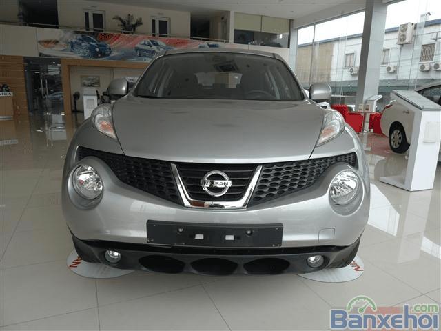 Bán Nissan Juke đời 2014, màu xám -8