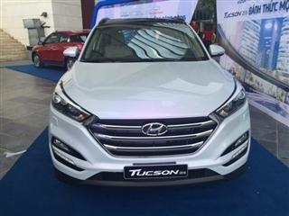 Cần bán gấp Hyundai Tucson đời 2015, màu trắng, xe nhập-0