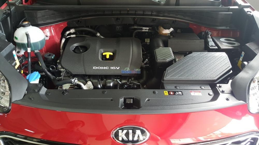 Bán xe Kia Sportage đời 2015, màu đỏ, xe nhập-9
