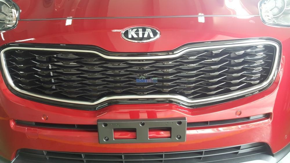 Bán xe Kia Sportage đời 2015, màu đỏ, xe nhập-15