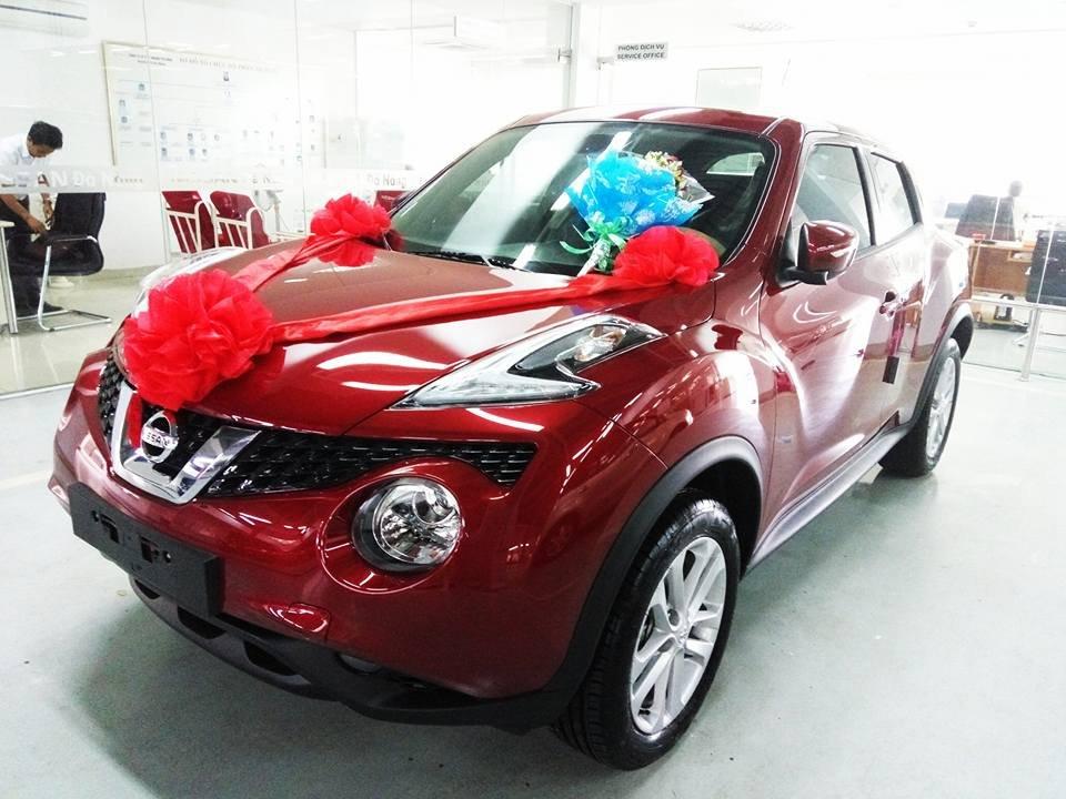 Bán ô tô Nissan Juke đời 2015, màu đỏ, nhập khẩu-3