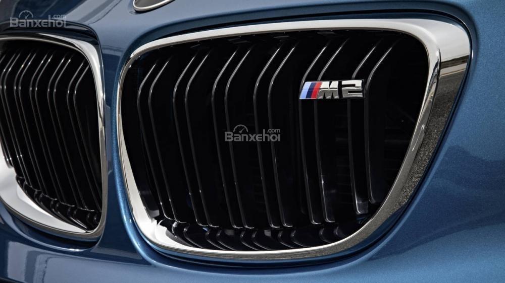 Đánh giá xe BMW M2 2016: Lưới tản nhiệt hình quả thận.