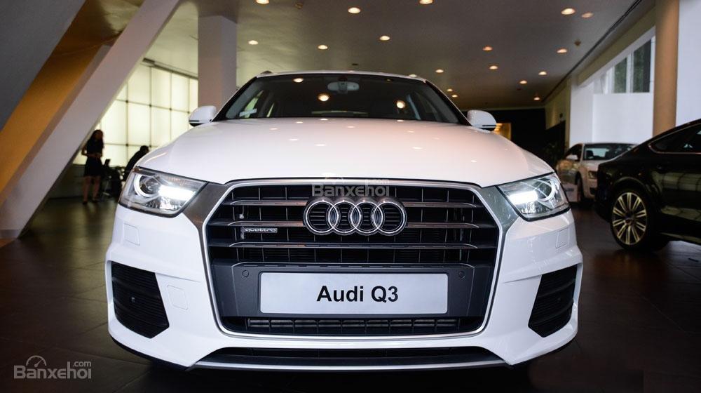 Đánh giá xe Audi Q3 2016 có lưới tản nhiệt hình lục giác với các nan to mạ crom.