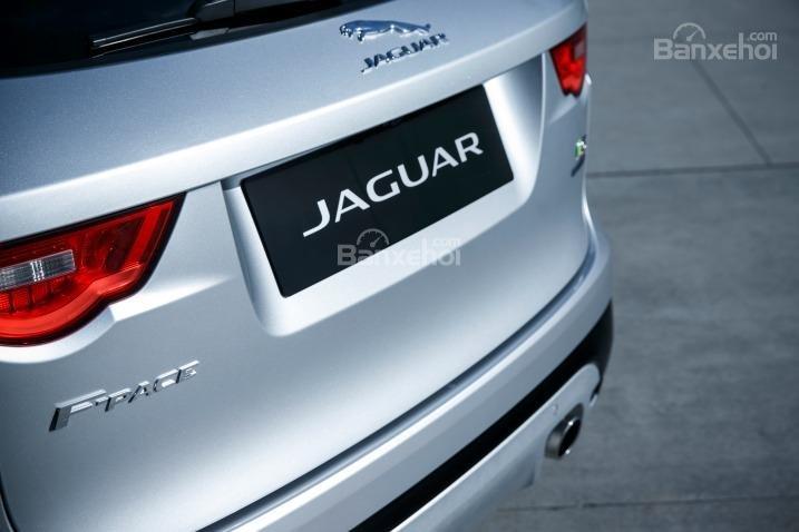Đánh giá xe Jaguar F-PACE 2017: Logo xe phía sau.