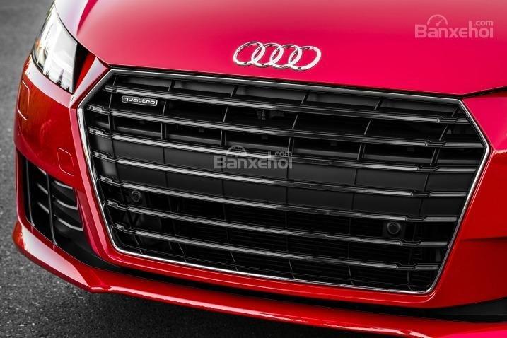 Đánh giá xe Audi TT 2017: Lưới tản nhiệt hình lục giác với các thanh lưới nằm ngang.