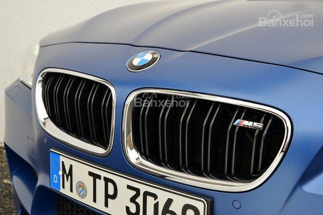 Đánh giá xe BMW M5 2016: Lưới tản nhiệt đặc trưng của BMW.