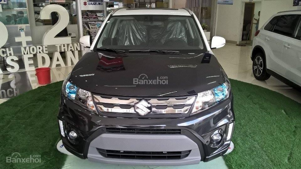 Suzuki Đại Lợi (13)