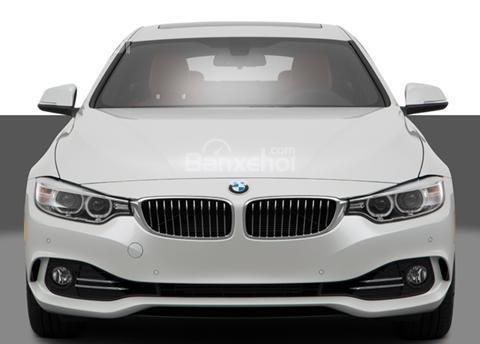 Đánh giá xe BMW 4-Series 2017: Đầu xe khi nhìn chính diện.