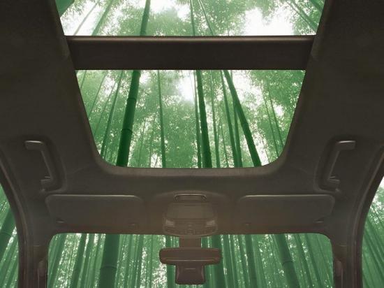 Nhiều bộ phận trên ô tô sẽ được làm từ tre do Ford sản xuất.