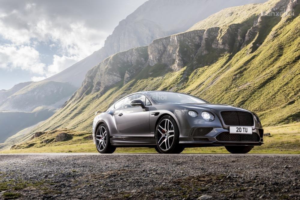 Bentley sắp ra mắt mẫu xe nhắm vào những người ăn chay 3