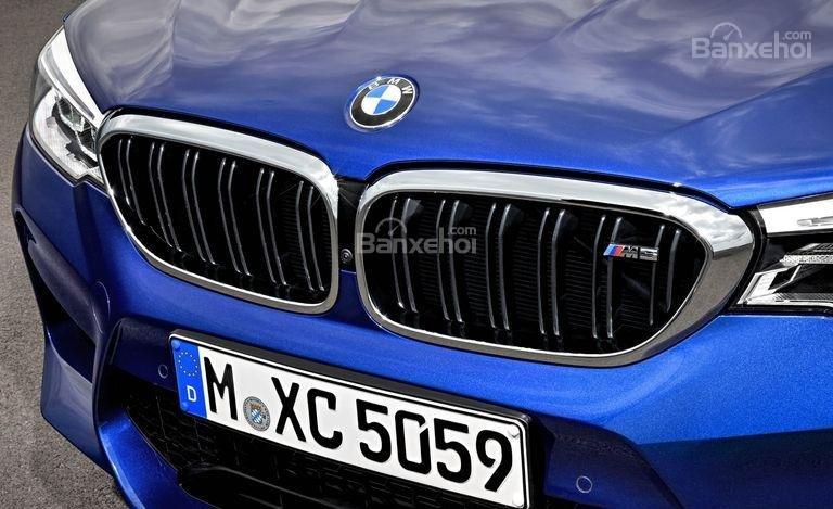 Đánh giá xe BMW M5 2018: Lưới tản nhiệt đặc trưng của BMW.