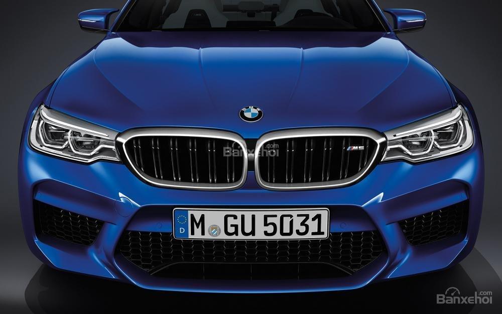 Đánh giá xe BMW M5 2018: Lưới tản nhiệt chia làm nhiều ô.