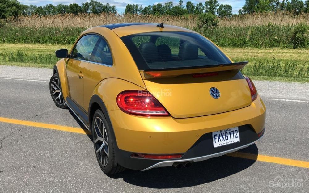 Đánh giá xe Volkswagen Beetle Dune 2017-2018: Đuôi xe cụp dạng coupe.