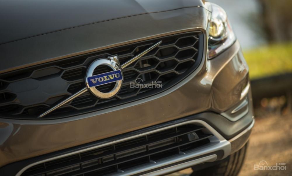 Đánh giá xe Volvo V60 về thiết kế đầu xe: Lưới tản nhiệt hình tổ ong