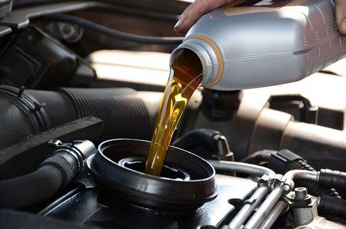 Kiểm tra dầu máy và dầu hộp số 6