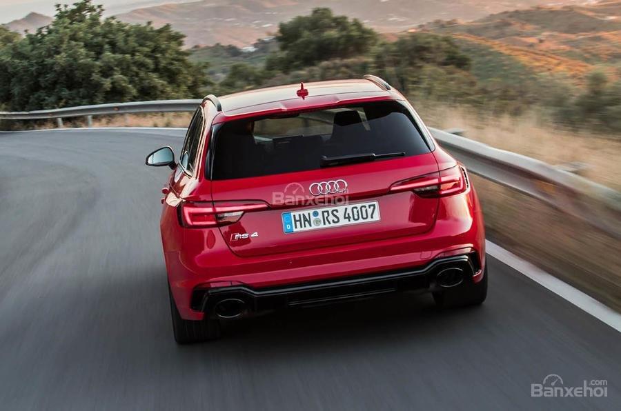 Đánh giá xe Audi RS4 Avant 2018: Đuôi xe.
