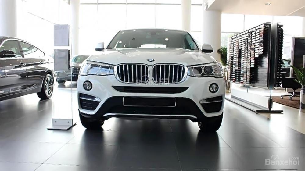 Bán BMW X4 xDrive 20i đời 2017, màu trắng, nhập khẩu-0