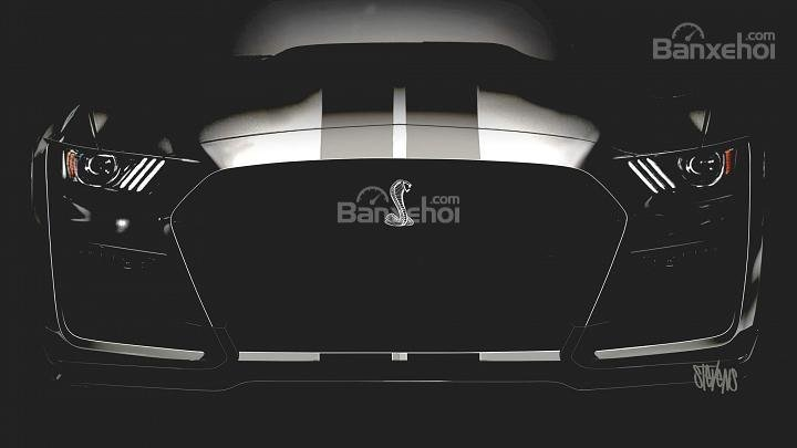 Ford nhá hàng hàng loạt mẫu xe hiệu suất và SUV - Ảnh 1.