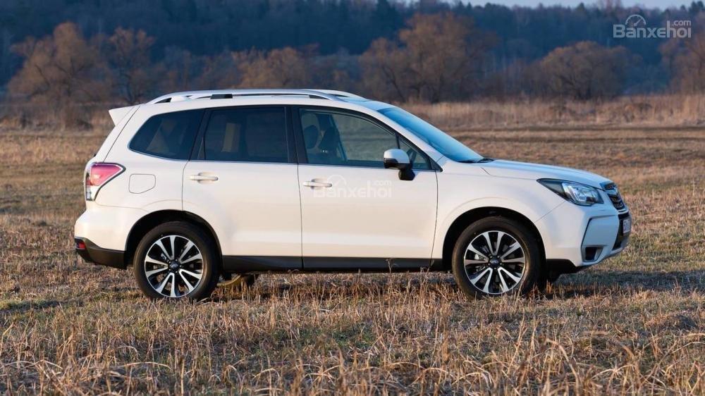 Subaru Forester 2019 có gì khác so với thế hệ cũ? - Ảnh 4.