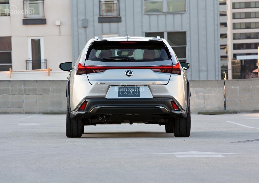 Đuôi xe Lexus UX 2019 - 2020.
