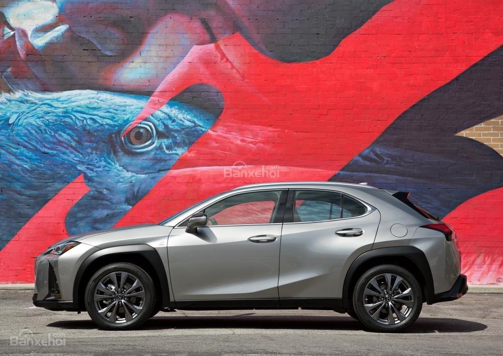 Thân xe Lexus UX 2019 - 2020