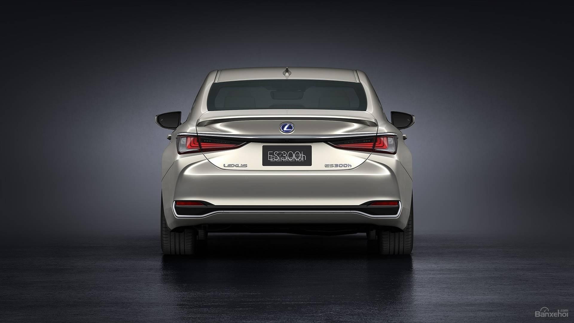 Đánh giá xe Lexus ES 2019: Đuôi xe gọn gàng z