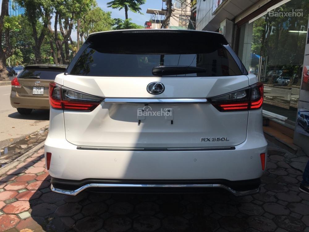 Cần bán Lexus RX 350L đời 2019, màu trắng, xe nhập Mỹ LH: 0982.84.2838 (4)