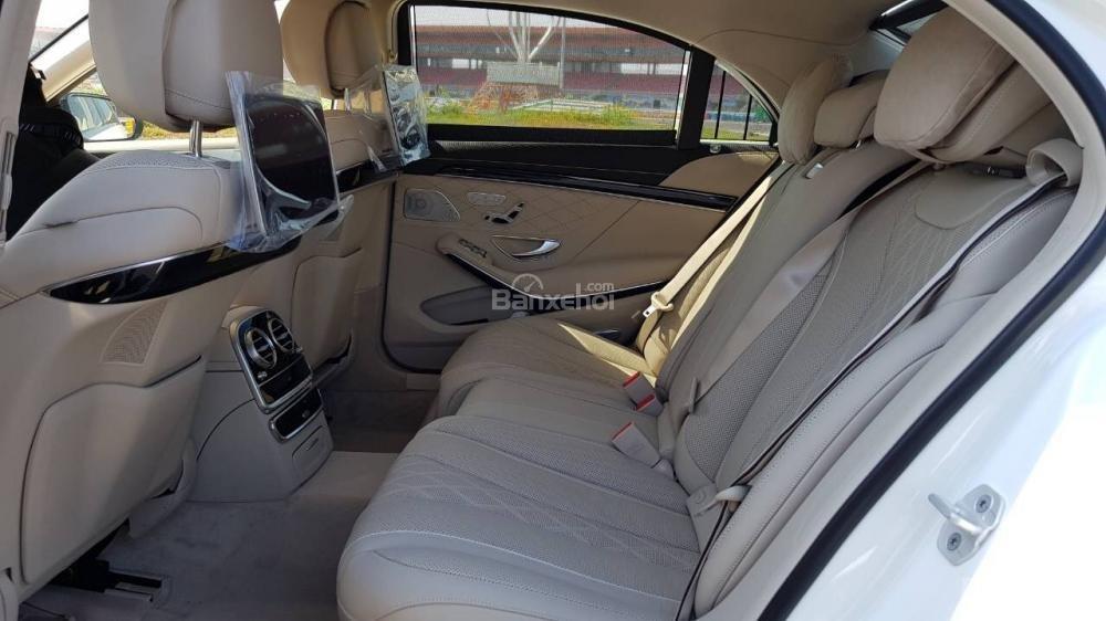 Bán Mercedes S450 Luxury 2019 xuất hiện tại thị trường Việt Nam, đẳng cấp (5)