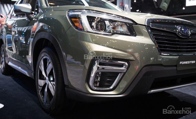 Đánh giá xe Subaru Forester 2019: Đèn pha và đèn sương mù.