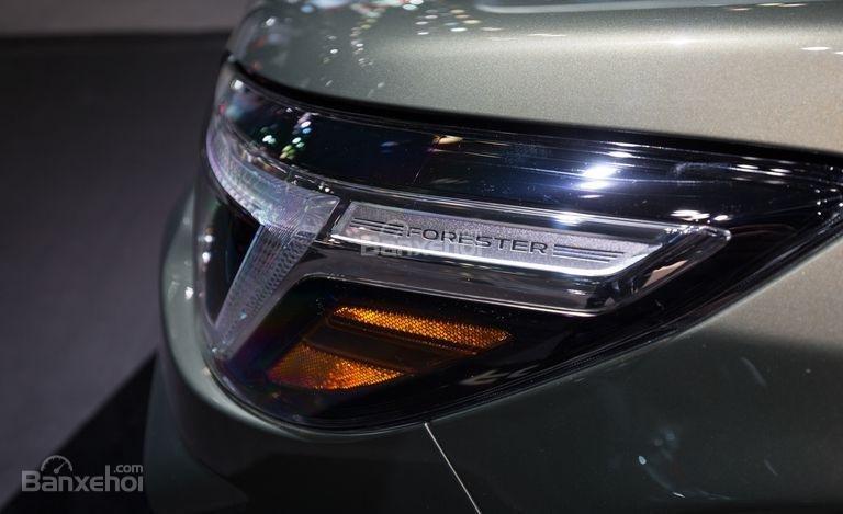 Đánh giá xe Subaru Forester 2019: Đèn hậu.