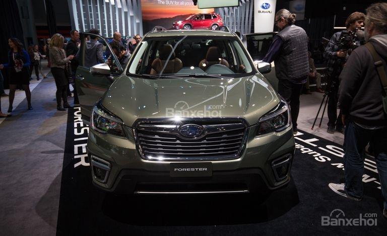 Đánh giá xe Subaru Forester 2019: Đầu xe.