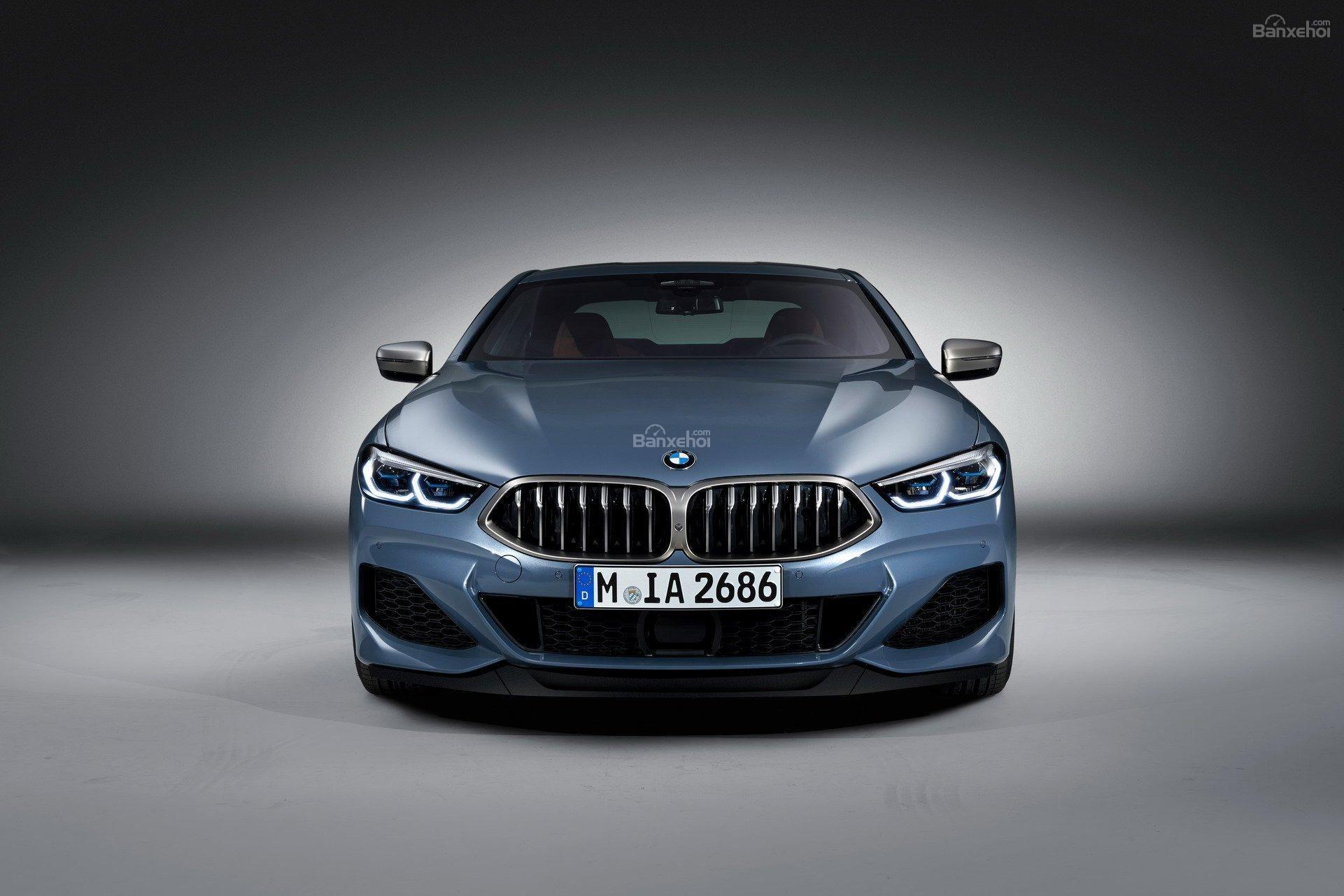 Đánh giá xe BMW 8-Series 2019: Đầu xe khá giống bản concept z