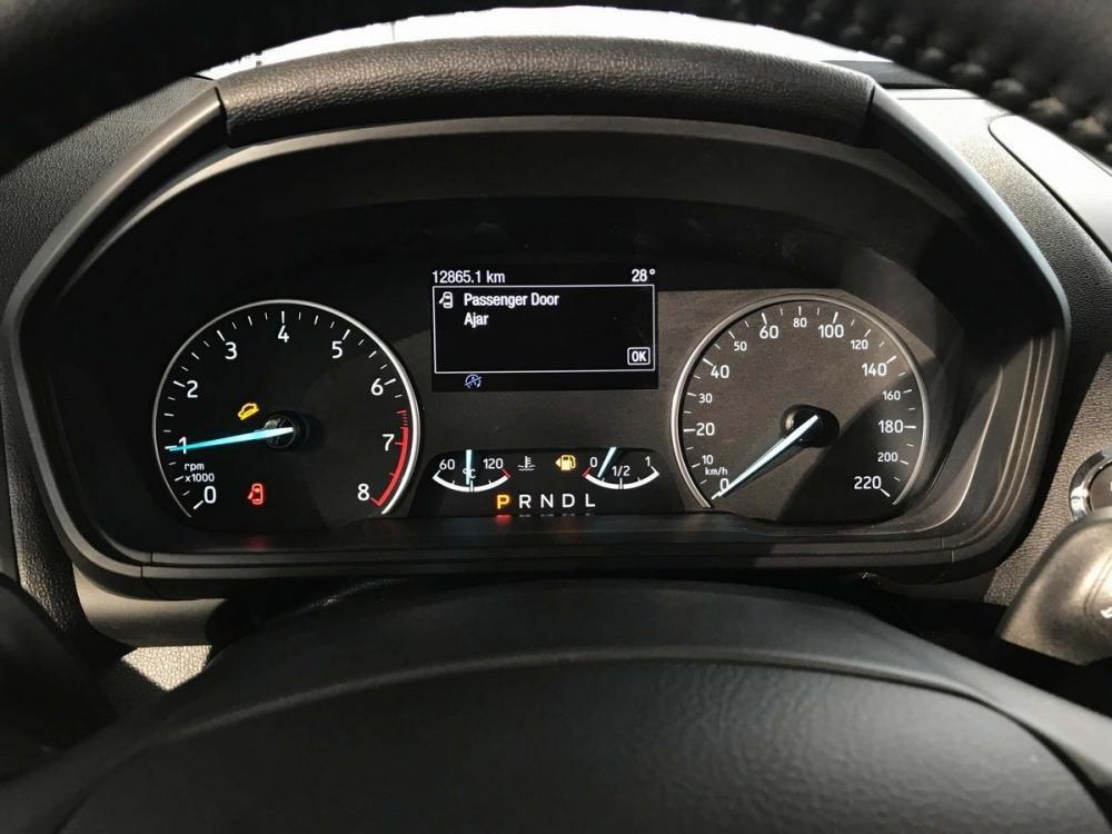 Đánh giá xe Ford EcoSport 1.0L Titanium 2018: Cụm đồng hồ lái,