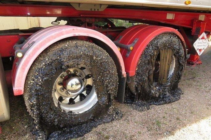 Lốp xe ô tô biến dạng vì nhựa đường chảy do nắng nóng kinh hoàng 3.