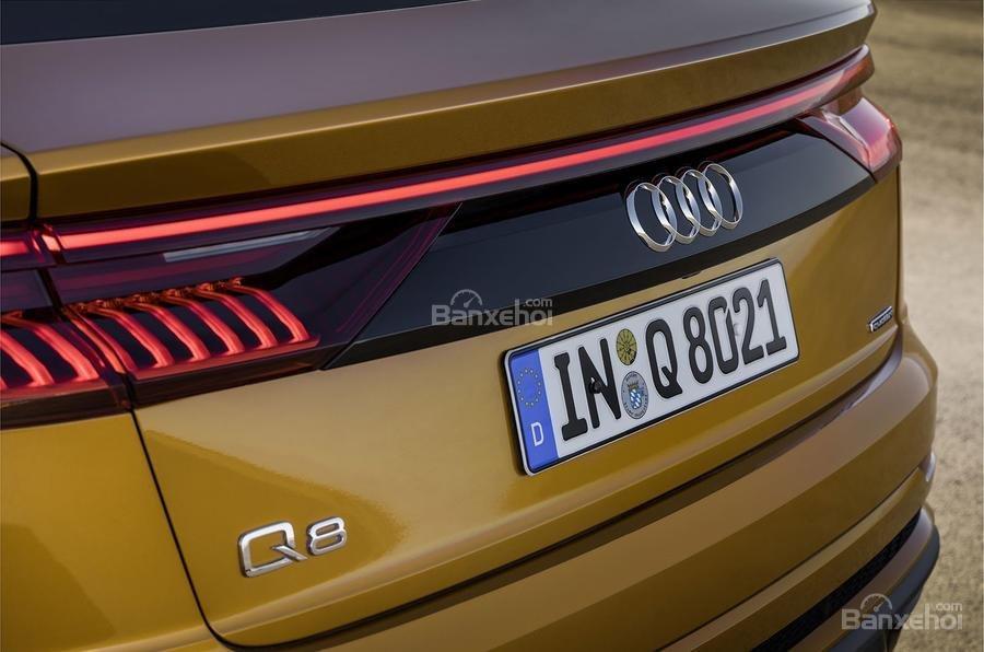 Đánh giá xe Audi Q8 2019 - đuôi - 3